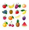 cartoon fruits and berries apple banana grape vector image