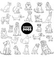 cartoon purebred dogs large set color book page vector image vector image