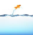 goldfish water vector image vector image