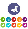 seal icons set color vector image vector image