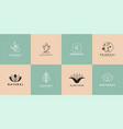 set natural logo for branding in modern design vector image vector image