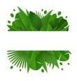 summer tropical leaf frame vector image vector image