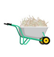 wheelbarrow and garlic vegetables in garden vector image vector image