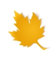 Yellow paper maple leaf vector image