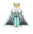 beetle over sacred geometry isolated vector image vector image