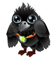 black raven with green emerald pendant vector image