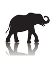 elephant silhouette with shadow vector image vector image