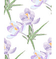 embroidery floral seamless pattern vector image