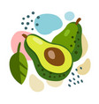 fresh avocado on color abstract background vector image