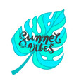 lettering quote summer vibes vector image