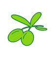 olives sign lemon scribble vector image vector image