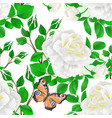 seamless texture flower white rose and buds vector image