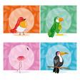 set of exotic birds vector image