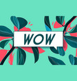 wow in design banner template for web vector image