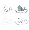 fur seal vector image