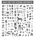 Big Set of Sport Icons vector image vector image