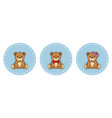 cute teddy bears vector image vector image