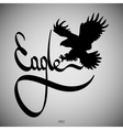 Eagle Calligraphic elements vector image vector image