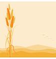 Golden Wheat Ears on Autumn Background vector image