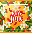 hand drawn calligraphy hello june vector image vector image