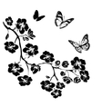 twig cherry blossoms and butterflies vector image vector image