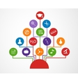 Infographic education tree vector image