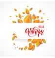 autumn design isolated vector image vector image