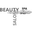 beauty salon spas why you should visit one text vector image vector image