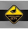 cctv surveillance symbol vector image vector image