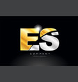 combination letter es e s alphabet with gold vector image vector image