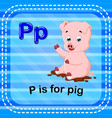 flashcard letter p is for pig vector image vector image