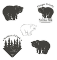 logo with the image of a bear vector image vector image