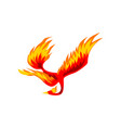 phoenix flaming fairytale firebird flying vector image