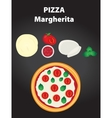Pizza margherita with ingredients vector image