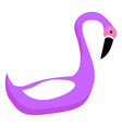 purple flamingo bird tropical exotic animal vector image vector image