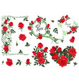 set design elements red roses isolated on white vector image