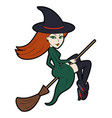 sexy witch on a broom vector image