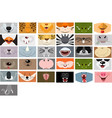 animals mouth set on white background fase vector image