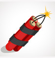 cartoon of dynamite vector image vector image
