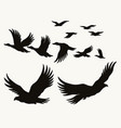 flying birds silhouettes vintage concept vector image vector image