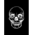 human skull with a lower jaw vector image vector image