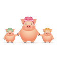 pigs in caps on white background chinese new year vector image