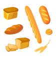 set bread icons vector image