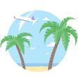 beach with palm and airplane vector image vector image