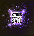 cyber monday hot sale vector image vector image