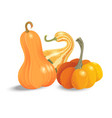 halloween pumpkin set different shapes and sizes vector image vector image
