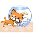 Kitten Aquarium and Fish vector image