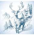 Mountain pine tree forest and deer sketch vector image vector image