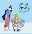 online market girl with mask shopping cart and vector image