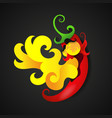 red hot chili pepper on fire vector image